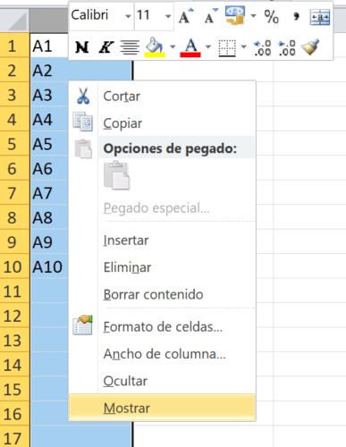 Ocultar mostrar filas columnas Excel